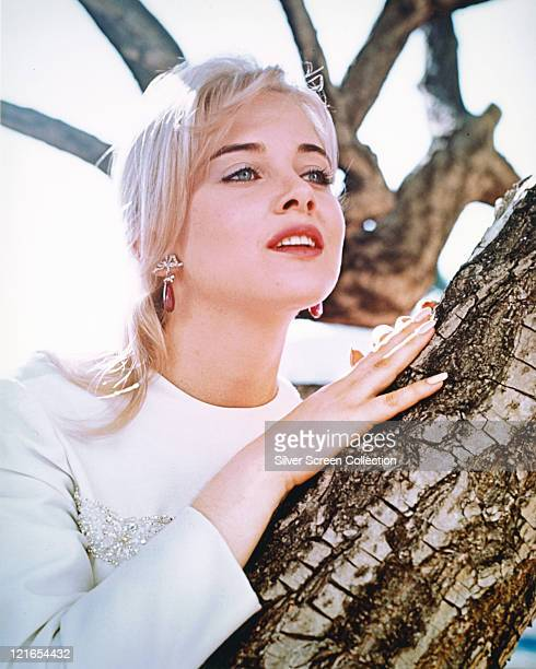 Sue Lyon US actress wearing a white top while posing against the branch of a tree circa 1965