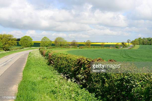 suffolk countryside. - suffolk england stock photos and pictures