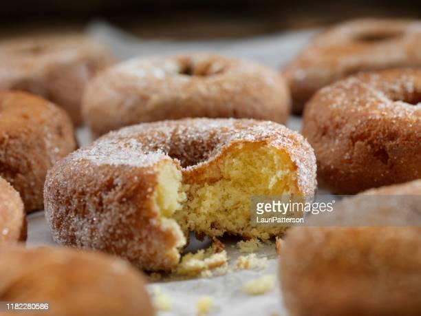 砂糖とスパイスケーキドーナツ - ドーナツ ストックフォトと画像