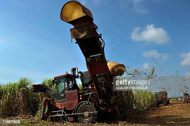 Sugar cane harvester at work at the agro industrial complex Jesus Rabi, on April 6 in Calimete, Matanzas province, Cuba. With the modernization of...
