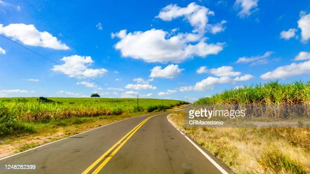 sugarcane plantations are crossed by roads and highways in the rural area of piracicaba. - crmacedonio stock pictures, royalty-free photos & images