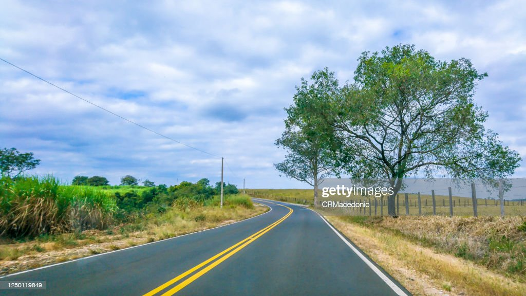 Sugarcane plantations are crossed by roads and highways in the rural area of Piracicaba. : ストックフォト