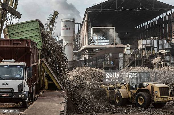 Sugarcane stalks are placed in a machine to wash before its crashed At Unidade industrial Cruz Alta da Guarani SA ethanol sugar and energy about 40...