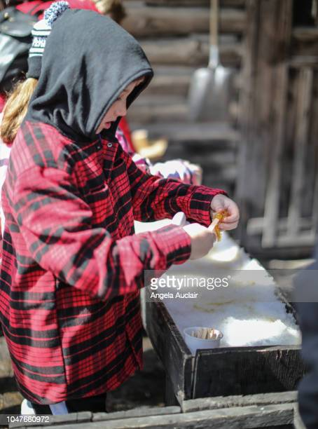 Sugaring Off in Quebec in the Spring
