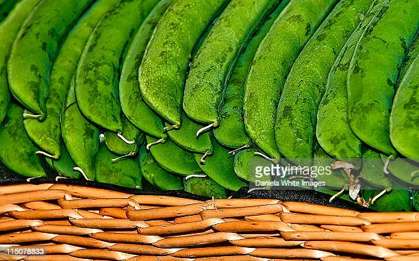 sugarsnaps - chelsea flower show stock pictures, royalty-free photos & images