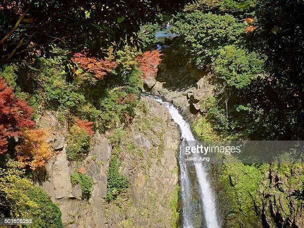 sugaruga falls surrounded by autumn foliage - minamiaso kumamoto stock pictures, royalty-free photos & images
