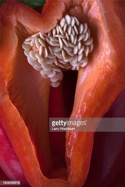 a suggestive looking cross section of a bell pepper, close-up, full frame - sexually suggestive stock photos and pictures