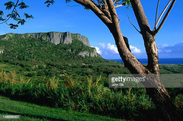 suicide cliff in distance. - saipan stock pictures, royalty-free photos & images
