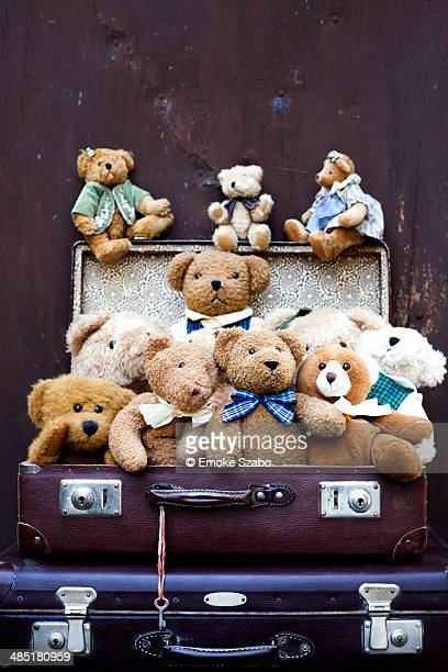 Suitcase filled teddy bears