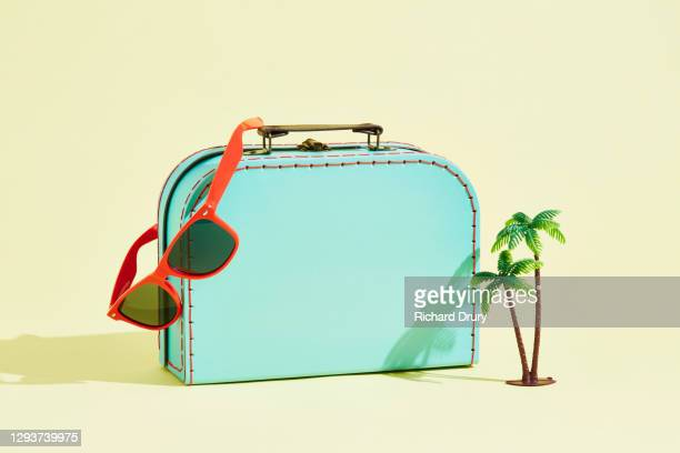 a suitcase with a pair of sunglasses and a palm tree - richard drury stock pictures, royalty-free photos & images