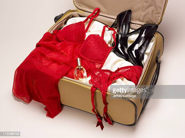 Suitcase with Negligee