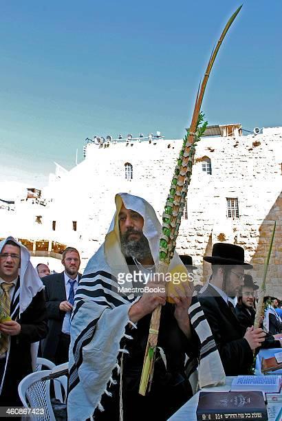 sukkot and lulav in israel - jewish prayer shawl 個照片及圖片檔