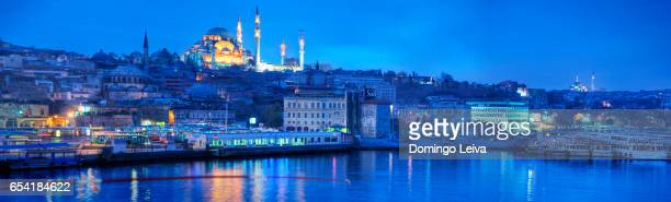 Suleymaniye Mosque and Golden Horn