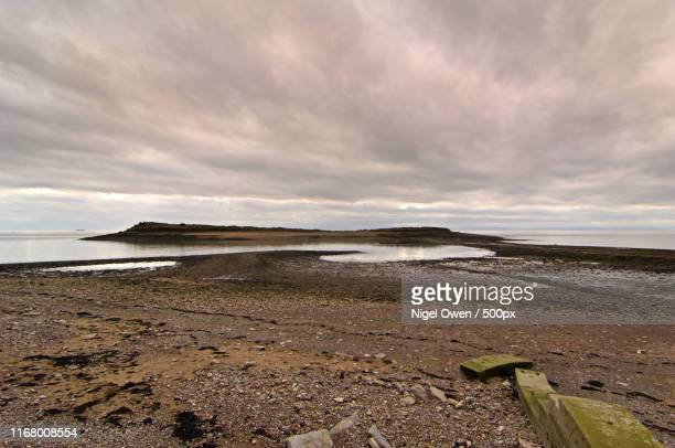 sully island at low tide - nigel owen stock pictures, royalty-free photos & images