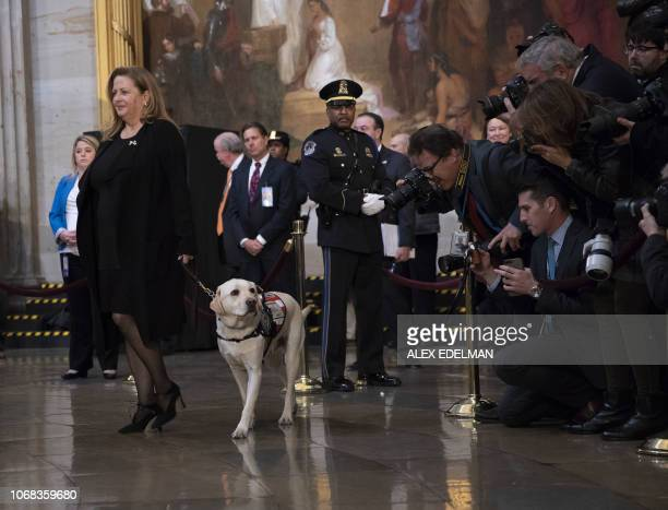 Sully the service dog is photographed by media as people pay respects as the remains of former US President George H W Bush lie in state in the US...