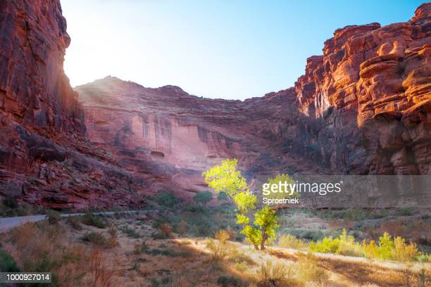 sulphur river valley wide - capitol reef national park stock pictures, royalty-free photos & images
