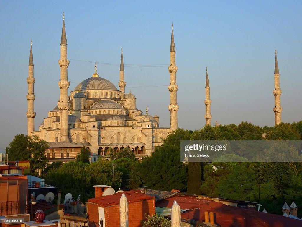 Sultanahmet Mosque, Istanbul : Stockfoto