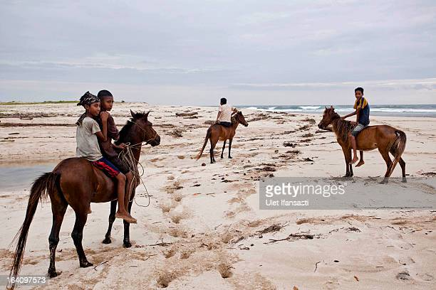 Sumbanese children play with their horses on the beach on March 4 2013 in Sumba Island East Nusa Tenggara Indonesia Sandalwood pony horses are native...