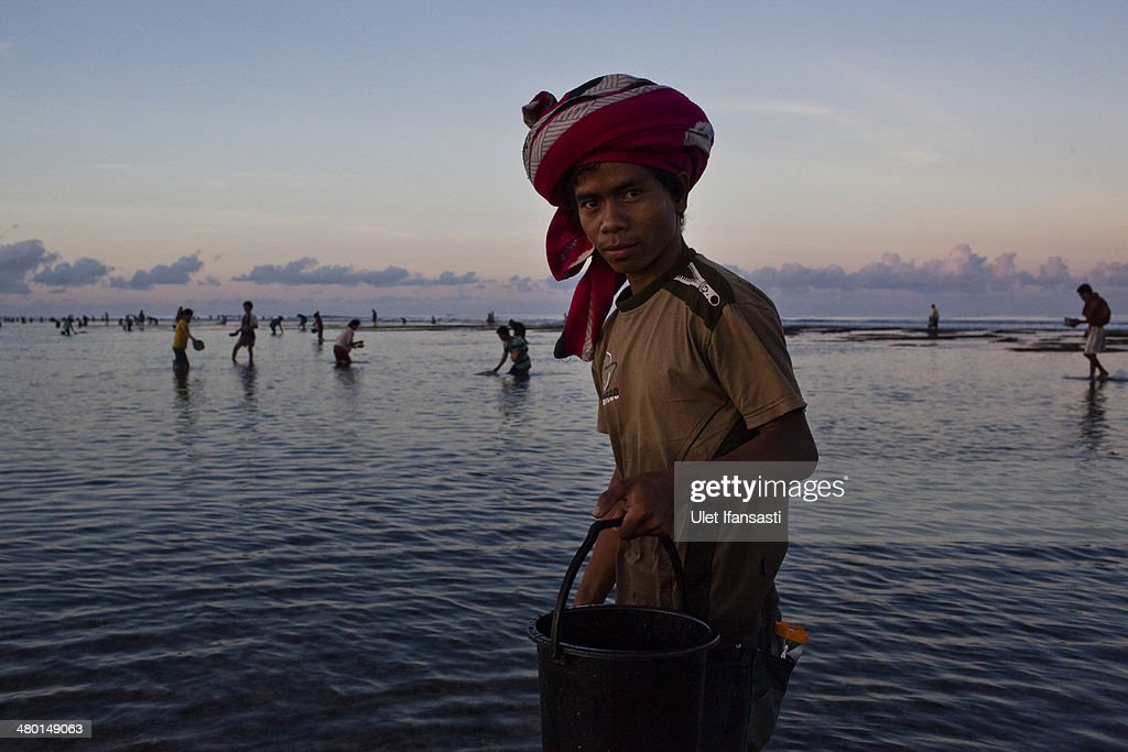 A sumbanese man stands as collect sea worms during Nyale ritual as part of the pasola war festival at Wainyapu village on March 23, 2014 in Sumba Island, Indonesia. The Pasola Festival is an important annual event to welcome the new harvest season, which coincides with the arrival of 'Nyale' sea worms during February or March each year. Pasola, an ancient ritual fighting game, involves two teams of men on horseback charging towards each other while trying to hit their rivals with 'pasol' javelins and avoid being hit themselves.
