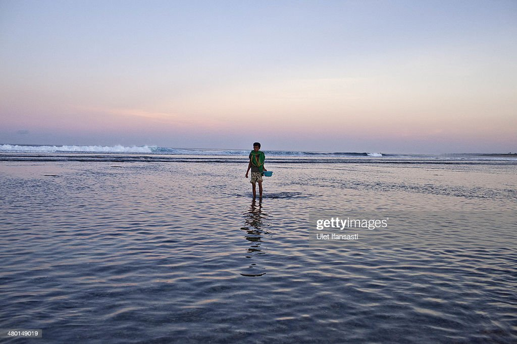 A sumbanese man stands as looking for sea worms during Nyale ritual as part of the pasola war festival at Wainyapu village on March 23, 2014 in Sumba Island, Indonesia. The Pasola Festival is an important annual event to welcome the new harvest season, which coincides with the arrival of 'Nyale' sea worms during February or March each year. Pasola, an ancient ritual fighting game, involves two teams of men on horseback charging towards each other while trying to hit their rivals with 'pasol' javelins and avoid being hit themselves.