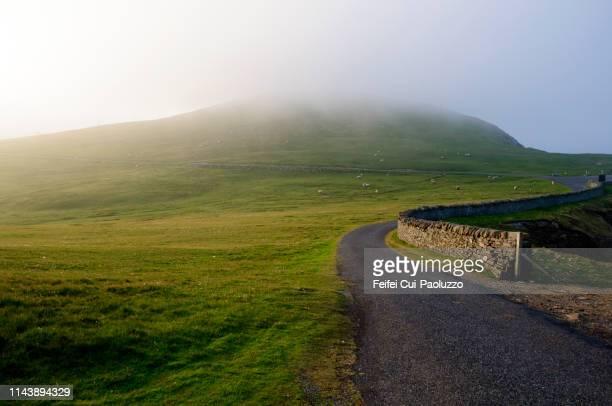sumburgh head, shetland - isole shetland foto e immagini stock