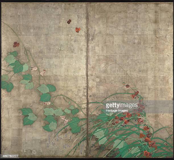 Summer and autumn flower plants Artist Hoitsu Sakai