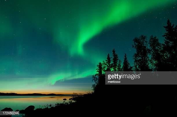 summer aurora on lake - aurora borealis stock pictures, royalty-free photos & images