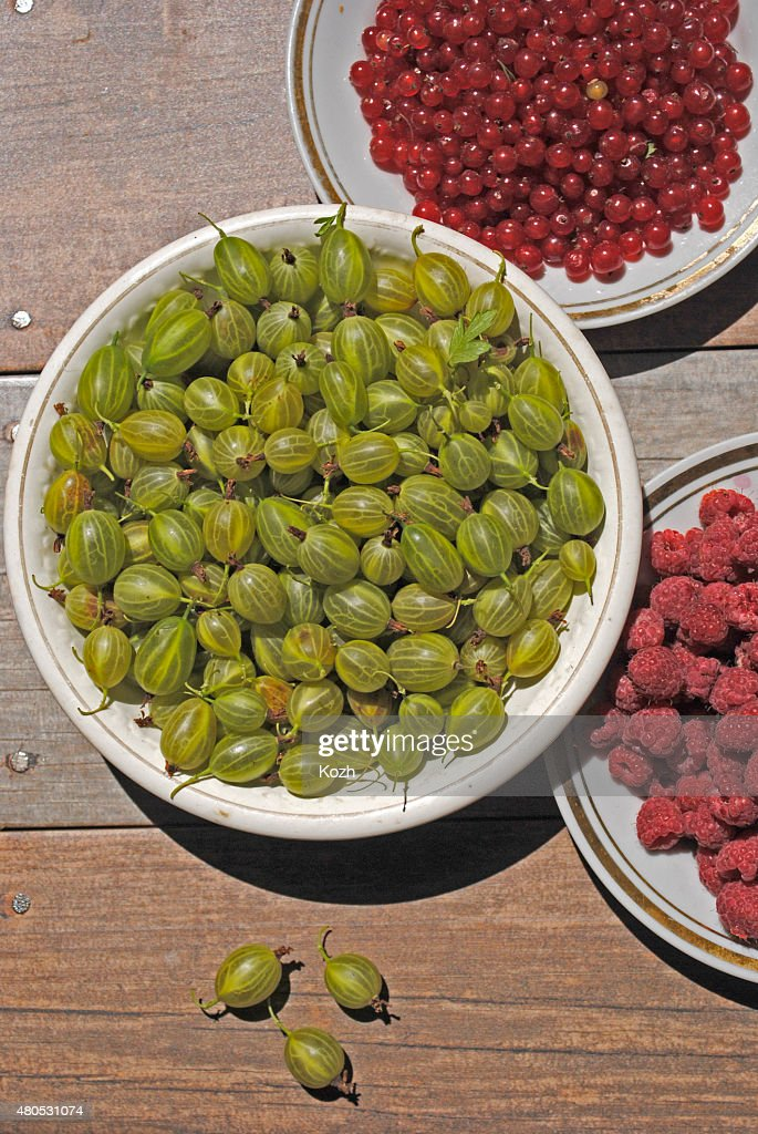 Summer berries in plates : Stock Photo
