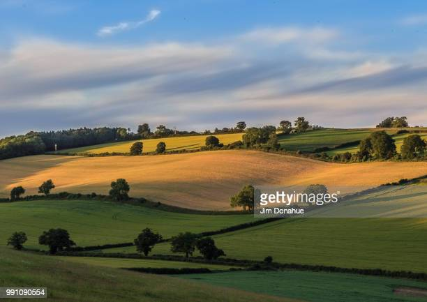 summer chiltern view over stonor - jim donahue stock pictures, royalty-free photos & images