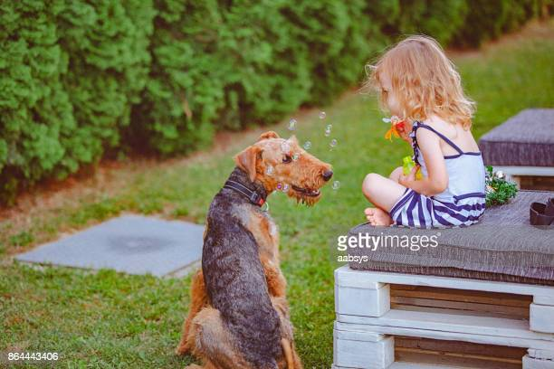 summer christmas - girl blows dog stock photos and pictures