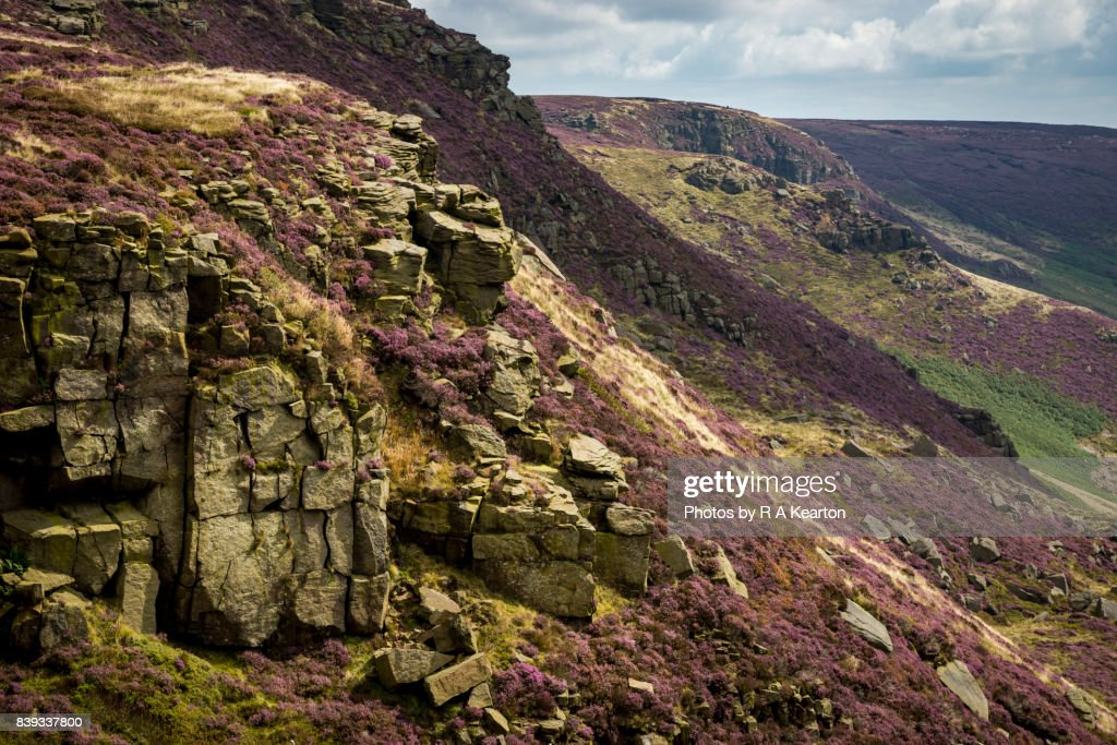 Summer colours on Kinder Scout, Peak District, Derbyshire : Stock Photo