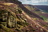 Summer colours on Kinder Scout, Peak District, Derbyshire