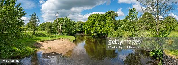 A summer day beside the river Etherow