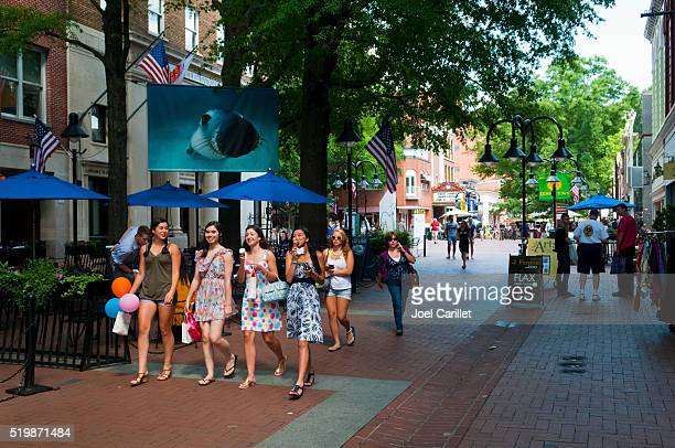 summer day in charlottesville, virginia - charlottesville stock pictures, royalty-free photos & images