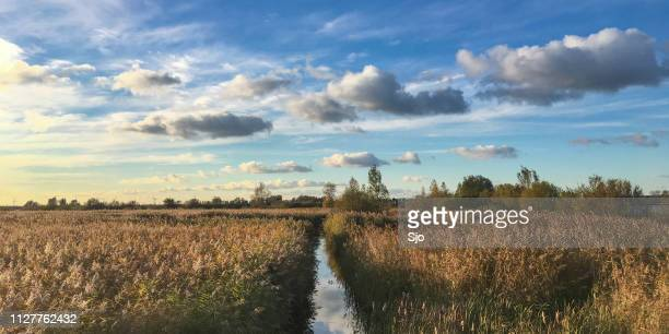 summer evening view on asummer evening view on a small creek in the weerribben-wieden nature reserve at the end of a beautiful summer day small creek in the weerribben-wieden  nature reserve at the end of a beautiful summer day - giethoorn stock pictures, royalty-free photos & images