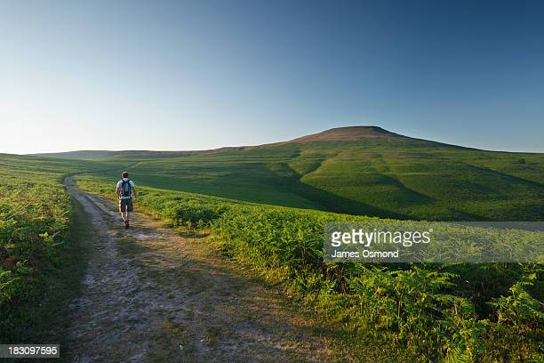 summer evening walk - brecon beacons stock pictures, royalty-free photos & images