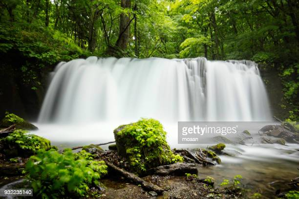 summer falls and my little adventure - aomori prefecture stock pictures, royalty-free photos & images