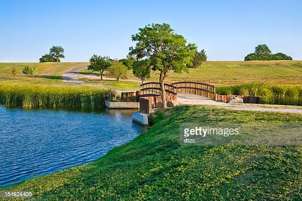 summer footbridge and lake - lubbock stock pictures, royalty-free photos & images