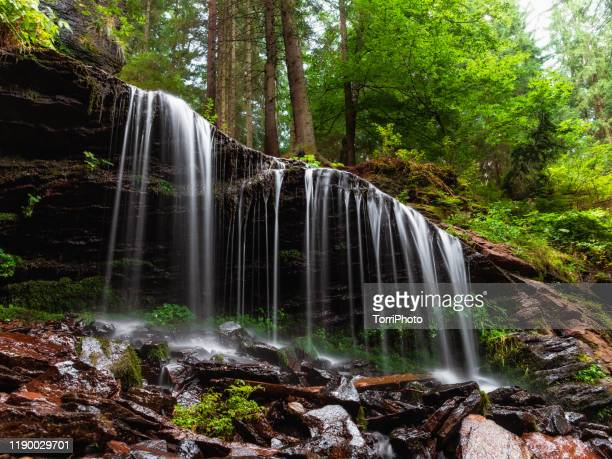 summer forest landscape with long exposure of beautiful waterfall flowing from rocky cliff. varsag waterfall in carpathian mountains - transylvania stock pictures, royalty-free photos & images