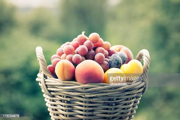 summer fruit in basket