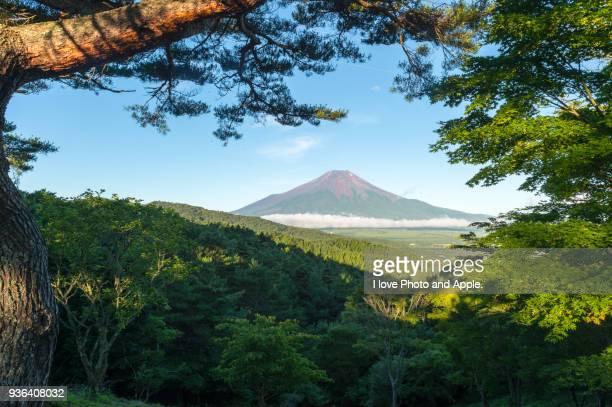 Summer Fuji