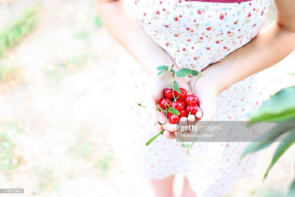 Summer goodies : Stock Photo