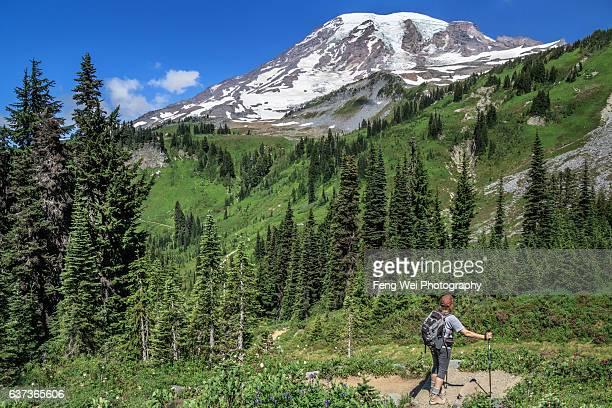 Summer Hike On Skyline Trail, Mount Rainier National Park, Washington USA