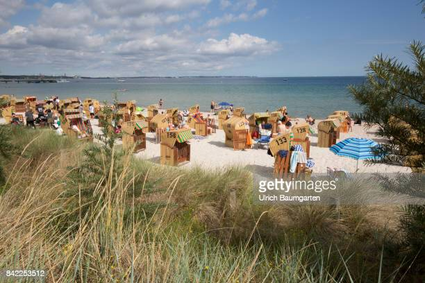 Summer holidays and beach holidays in Scharbeutz at the Baltic Sea - beach chairs. Dune grass for dyke protection.