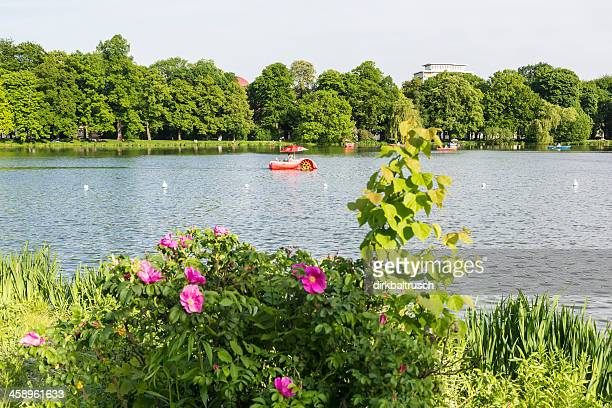 Sommer Idylle in Chemnitz