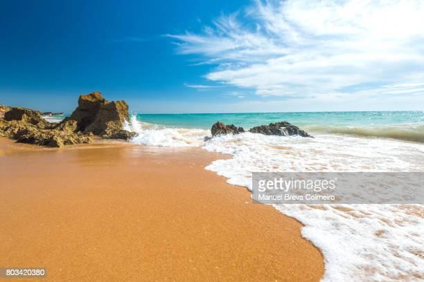 summer in cádiz - tarifa stock photos and pictures