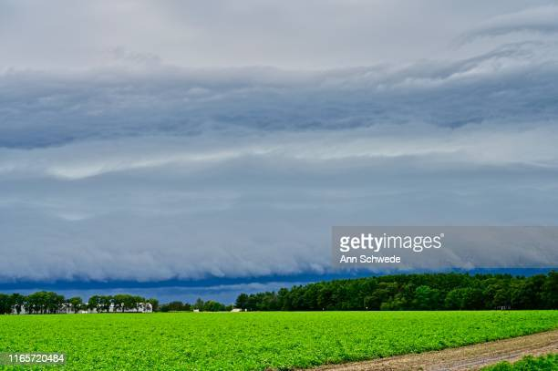 summer in rural wisconsin - vilas_county,_wisconsin stock pictures, royalty-free photos & images