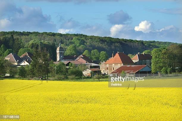 summer in the Bourgogne