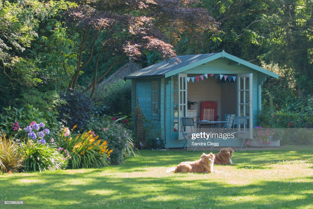 Summer in the garden with the summer house and basking dogs : Stock Photo