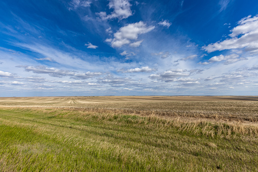 Summer in the Prairie of Canada 1167613369